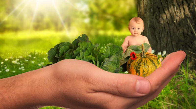 nutrition enfant