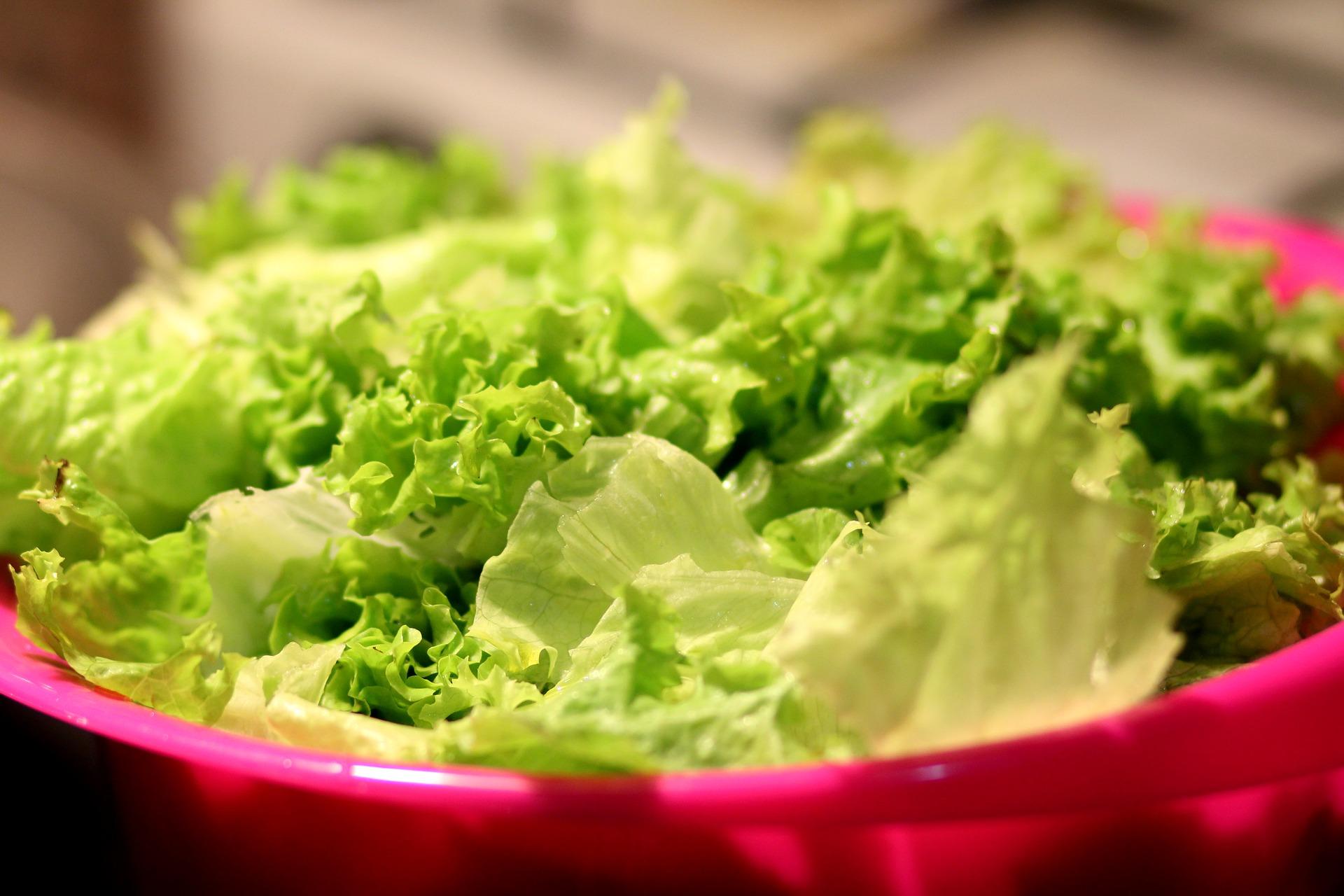 food 1834645 1920